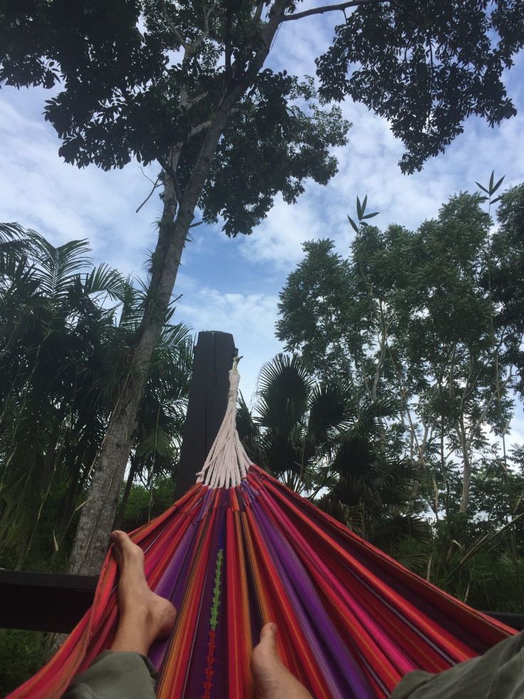 hammockinthejungle