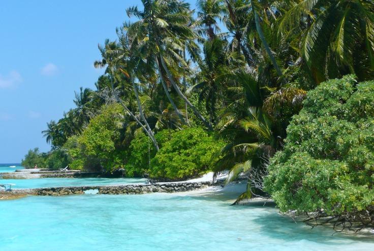 maldives-1310562_1280
