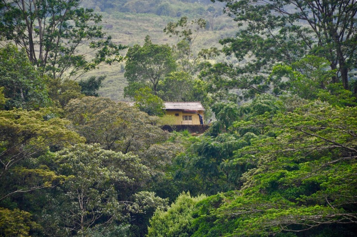 srilankahome