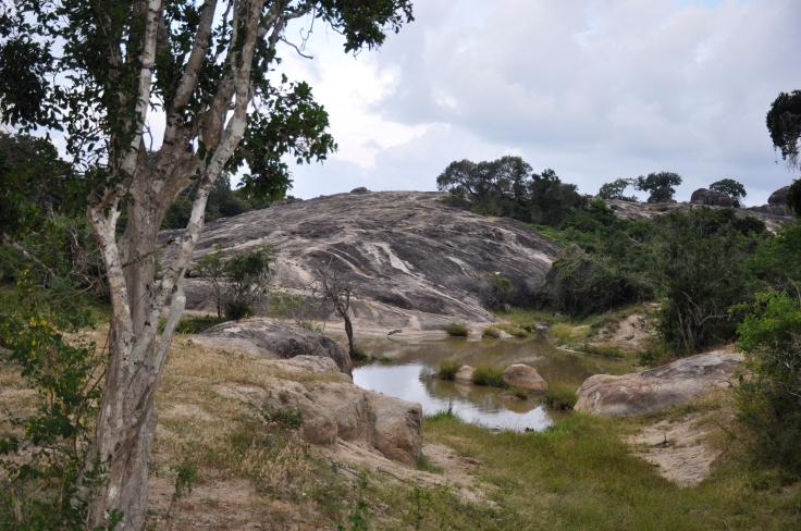 srilankayalapark