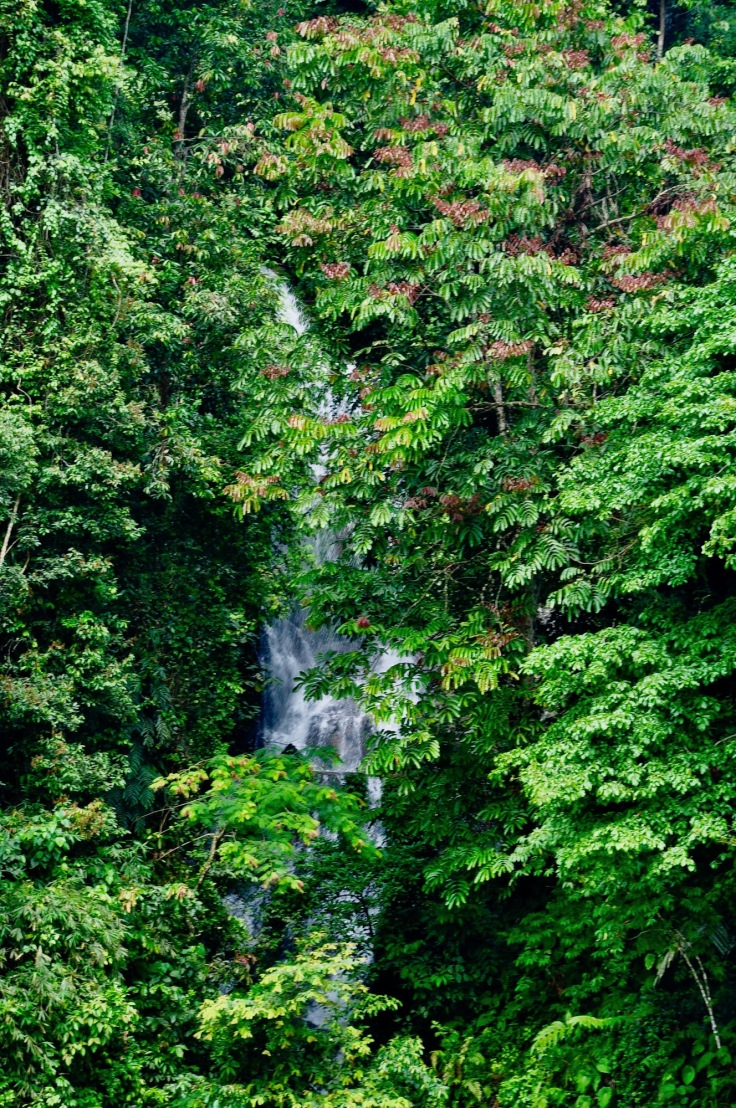 waterfallbukitlawang