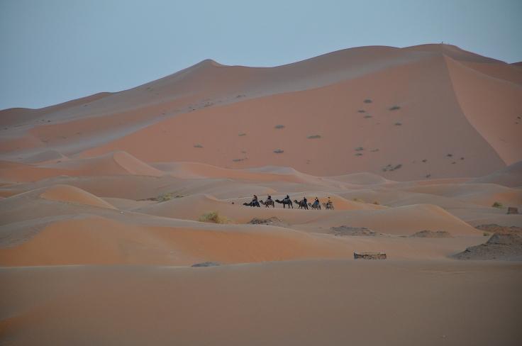 camelriderssahara.JPG