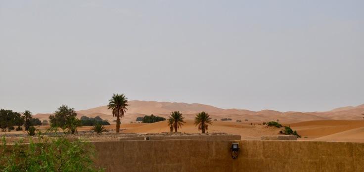 saharalandscape